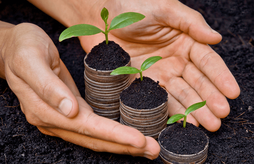 Socially Responsible Investing: The Next Big Thing?